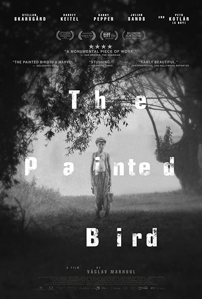Cover Film The Painted Bird (2019)